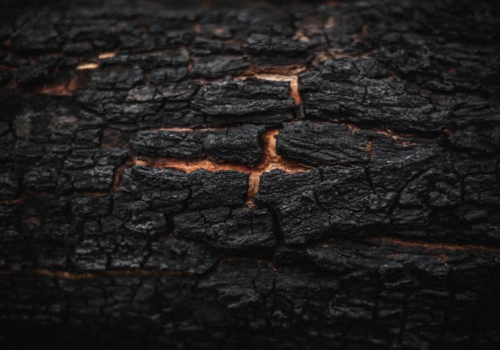 catastrofe ambientale futuro
