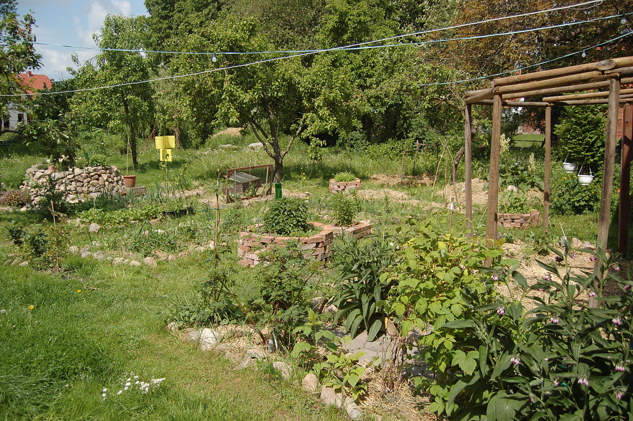 Giardino di permacultura